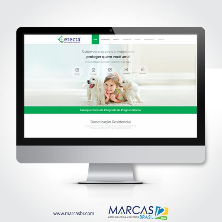 blog-marcas-brasil-site-detecta